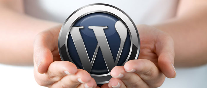 Wordpress Websites & CMS