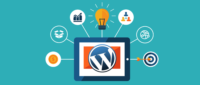 Wordpress plugins, themes and hosting.
